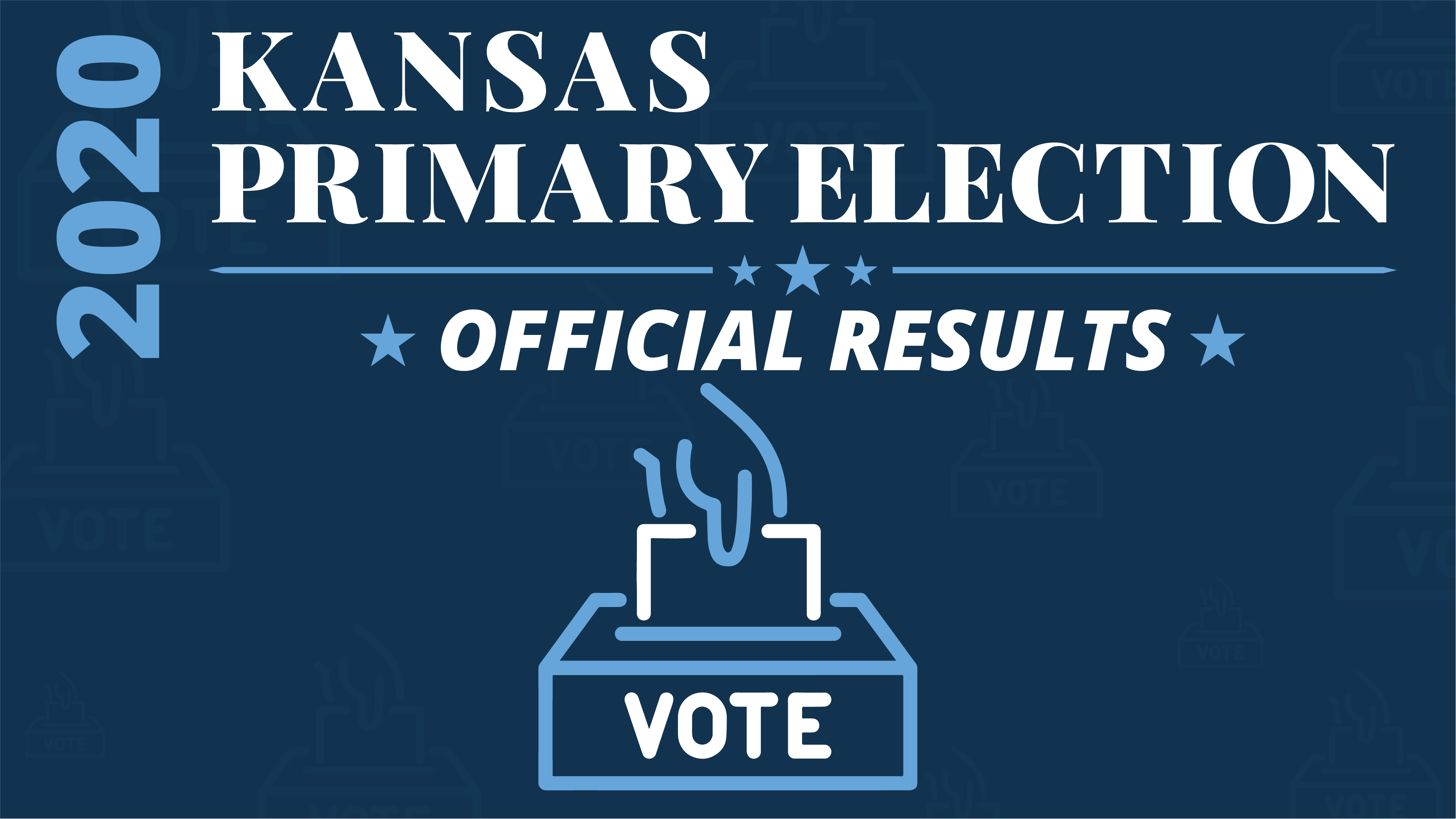 Primary Election Results graphic